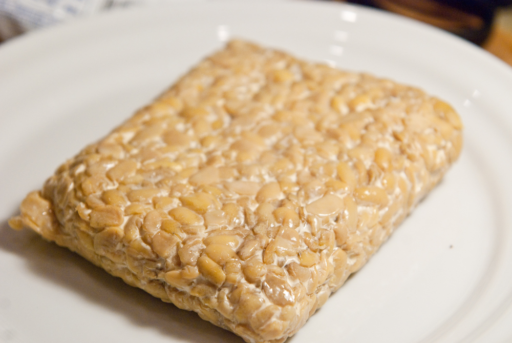 Uncooked Tempeh Patty